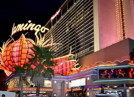 Контакты казино фламинго игровые автоматы бонус пирамиды